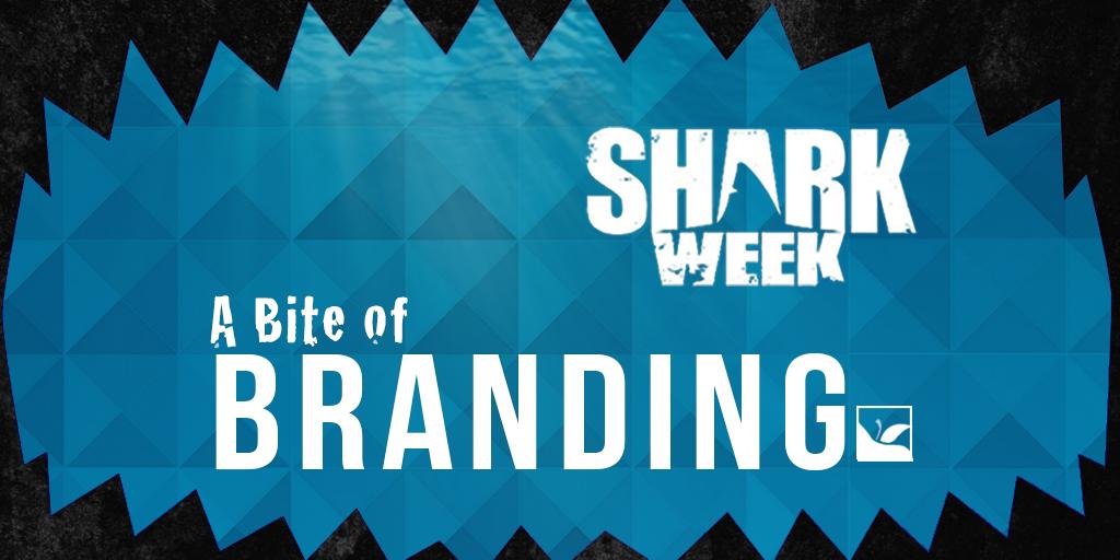 sharkweeknew